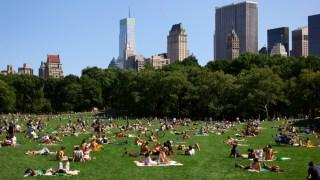 summer central park