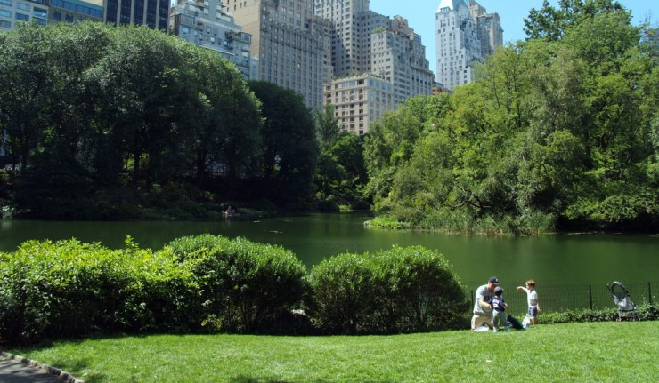 lower central park