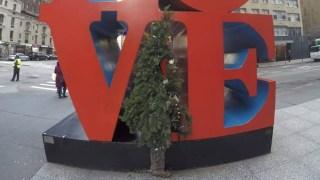 mr xmas tree man