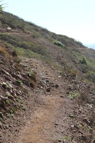 SCA Trail 11-20-15 0527