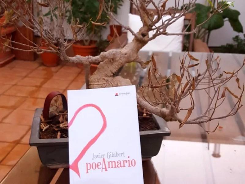 PoeAmario, de Javier Gilabert