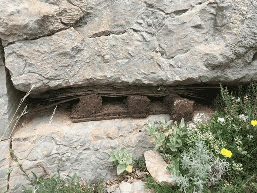 Outils de la marbrière de Saint-Antonin