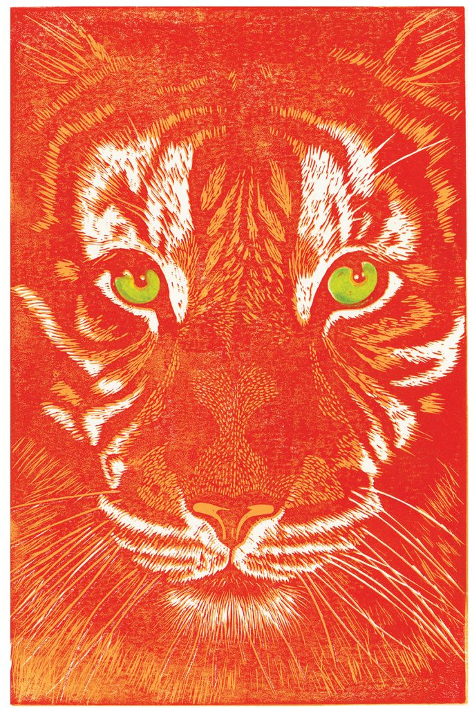 hazelmcnab orange tiger