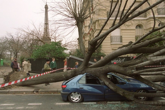 Car crushed in storm in Paris
