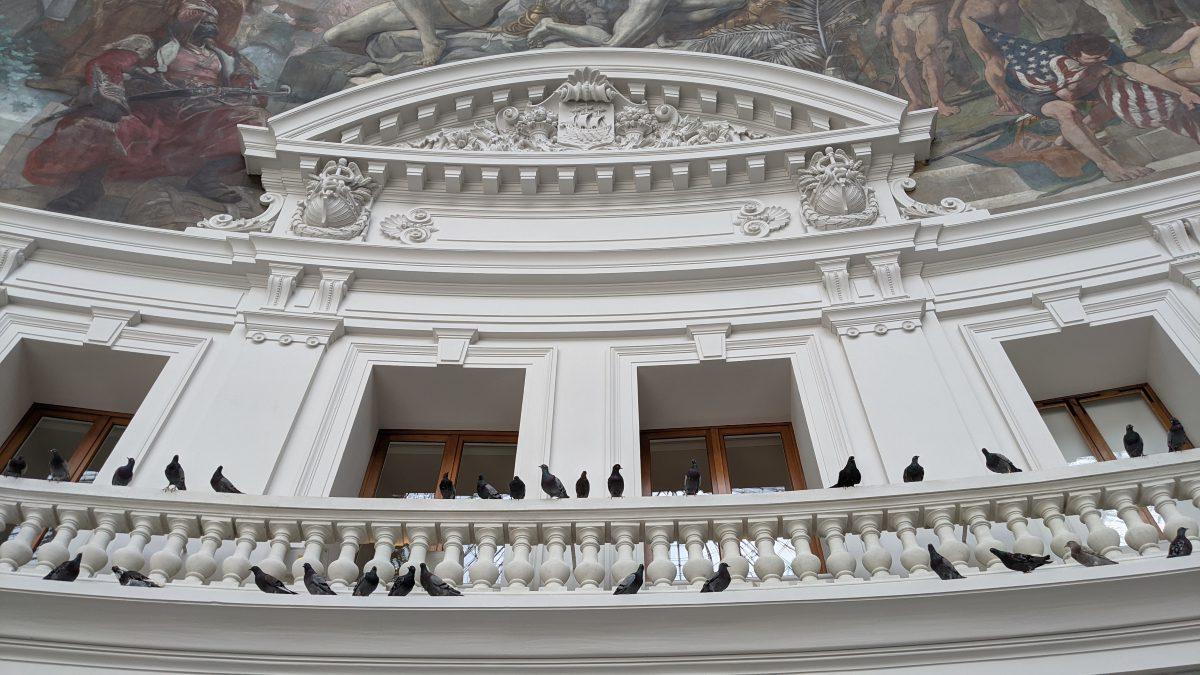 pigeons on balustrade