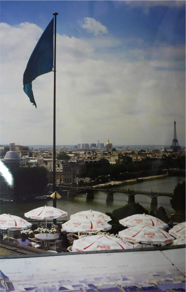 View from La Samaritaine's terrace