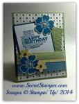 By Debbie Mageed, Morning Meadow, Petite Petals, Delightful Dozen, Birthday