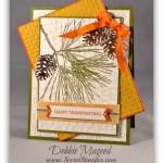 Ornamental Pine for Thanksgiving
