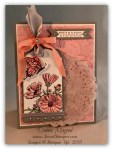 By Debbie Mageed, On Gossamer Wings, Stampin Up