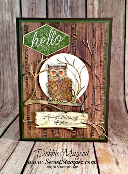 Wonderful Autumn Card Featuring #StillNight, #AccentedBlooms, #Masculine, #NIghtOwl, #SecretsToStamping, #StampinUp