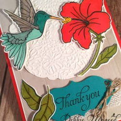 Pretty Thank You Card Featuring: Humming Along, Hummingbird Framelits, #ThankYou #Occasions #DebbieMageed #SecretsToStamping #StampinUp
