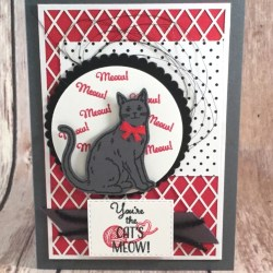 Cute Friendship Card Featuring Nine Lives Cat Punch #AllOccasion #SecretsToStamping #StampinUp