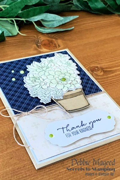 Simply Succulents Thank You Card by Secrets To Stamping