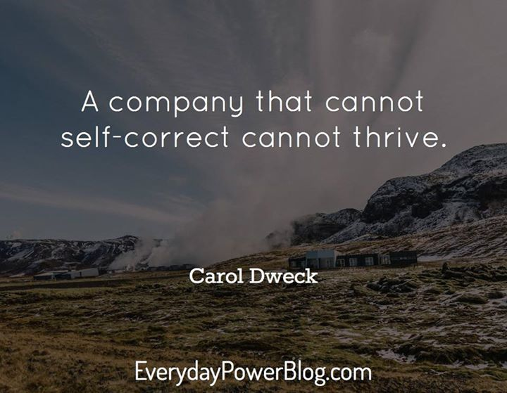 A company that cannot self correct cannot thrive.