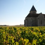 chablis france wine tour