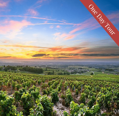 One Day Tour in France Burgundy