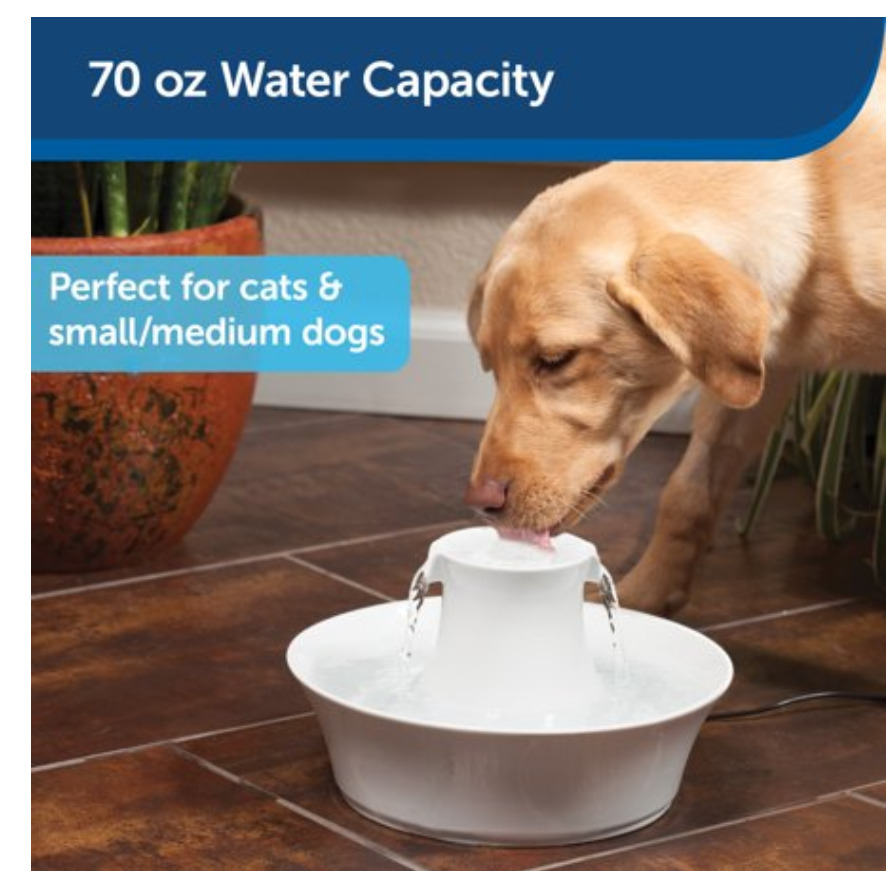 Smart Pet Gadgets: Dogs and Cats Water Fountain