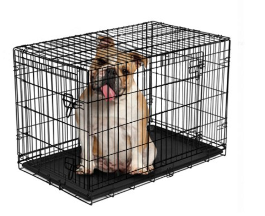 New Puppy Checklist: A double-door folding dog crate with divider