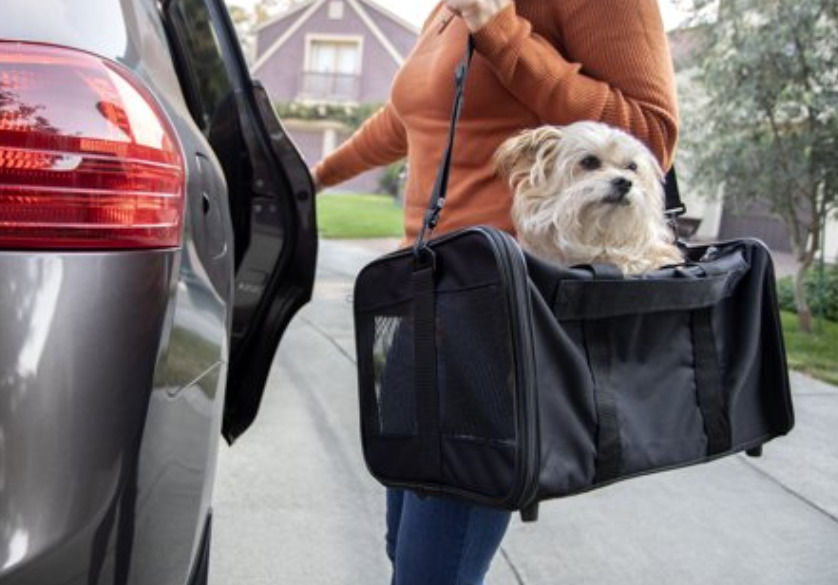 Dog travel soft sided carrier