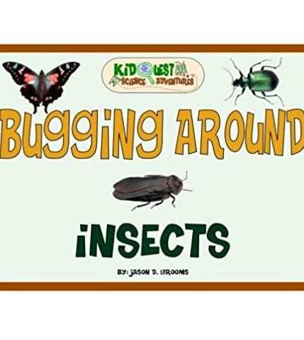 Bugging Around Insects
