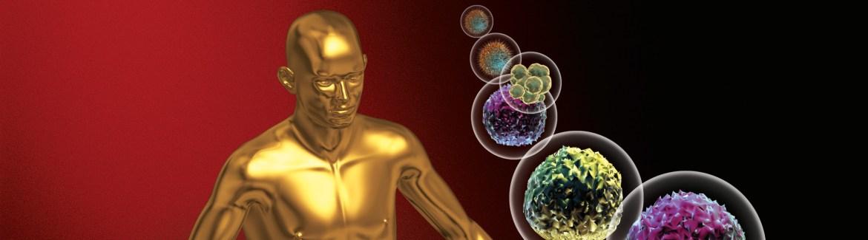 Engineered thyroid stem cells
