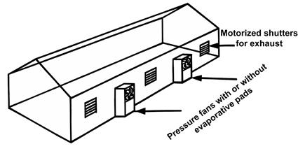 District Heating Failure Mechanisms