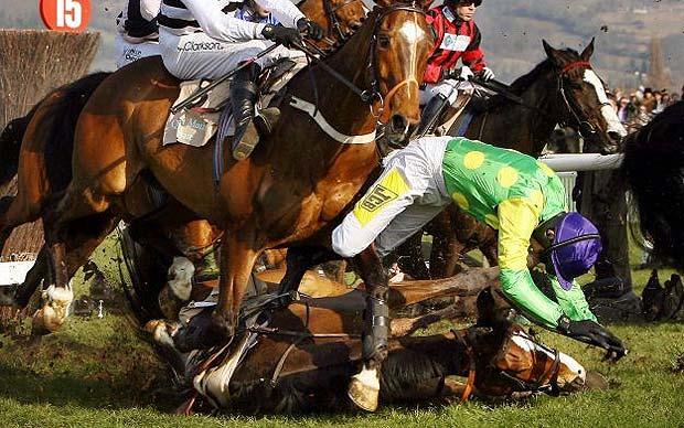 Jumps racing faces axe in Australia  Telegraph
