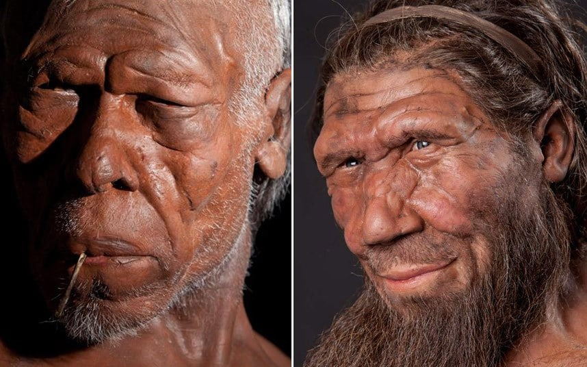 Meet The Ancestors  Best Ever Reconstruction Of Early