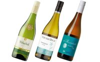 Wine Review: Vina Sol and Spanish whites - Telegraph