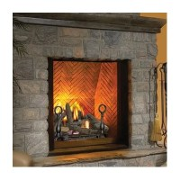 Napoleon The Dream Direct Vent Wall Mount Gas Fireplace ...