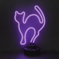 Neonetics Business Signs Cat Neon Sign & Reviews | Wayfair