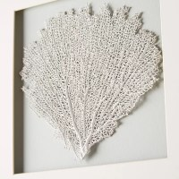 Montmartre Sea Fan Wall Decor | Joss & Main