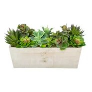 Artificial Succulent Garden Desk Top Plant in Decorative Vase