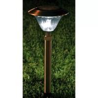 Homebrite Solar Solar LED Pathway Lighting & Reviews | Wayfair