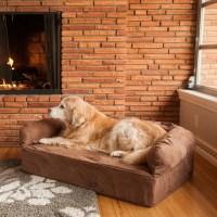 Snoozer Luxury Dog Memory Foam Sofa & Reviews | Wayfair