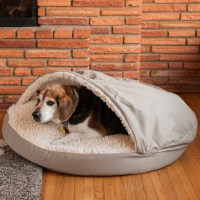 Snoozer Cozy Cave Hooded Dog Bed & Reviews | Wayfair