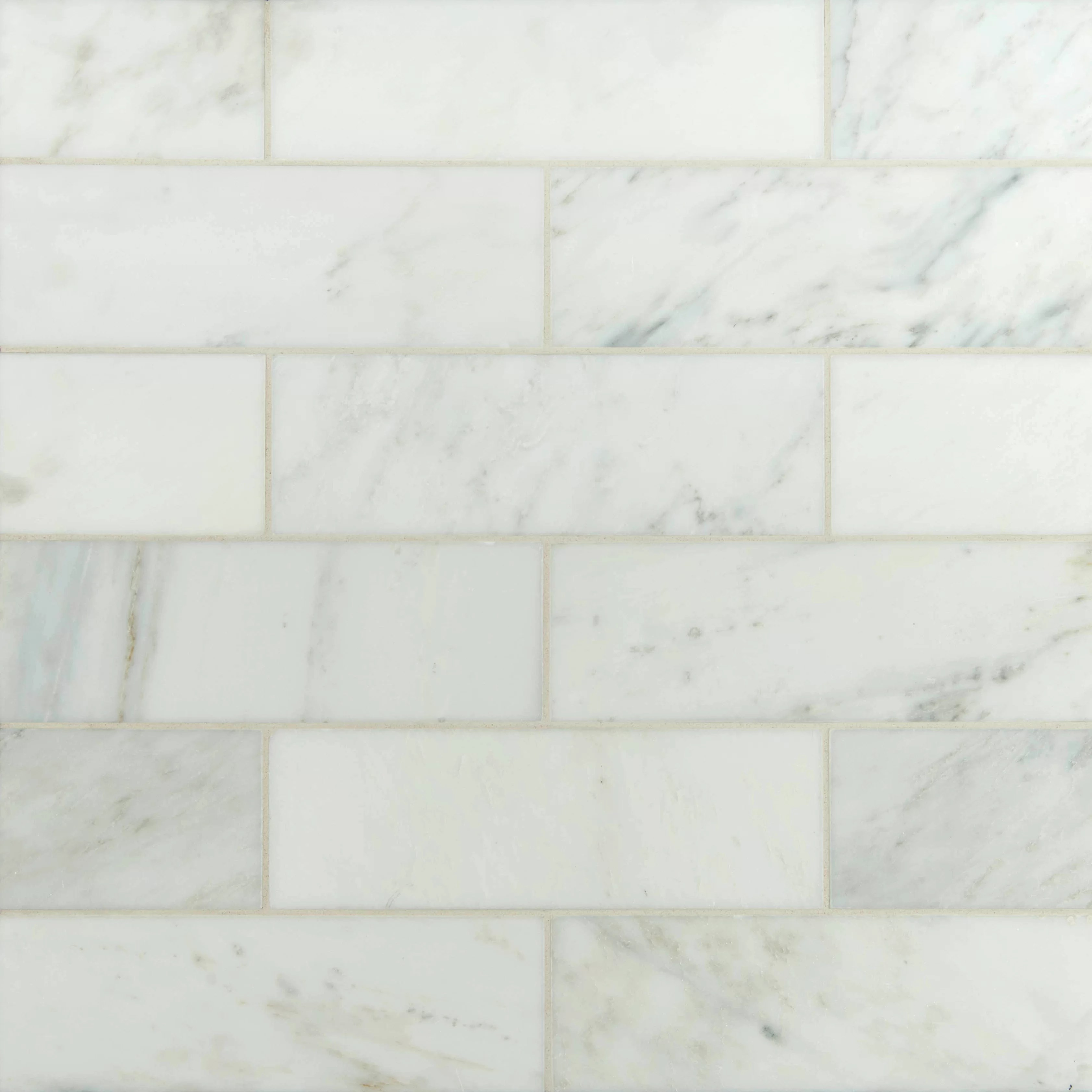 MSI 3 x 6 Polished Marble Tile in Carrara White