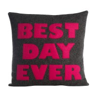 Alexandra Ferguson Celebrate Everyday Best Day Ever Throw ...