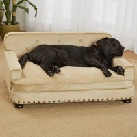 Enchanted Home Pet Library Dog Sofa & Reviews