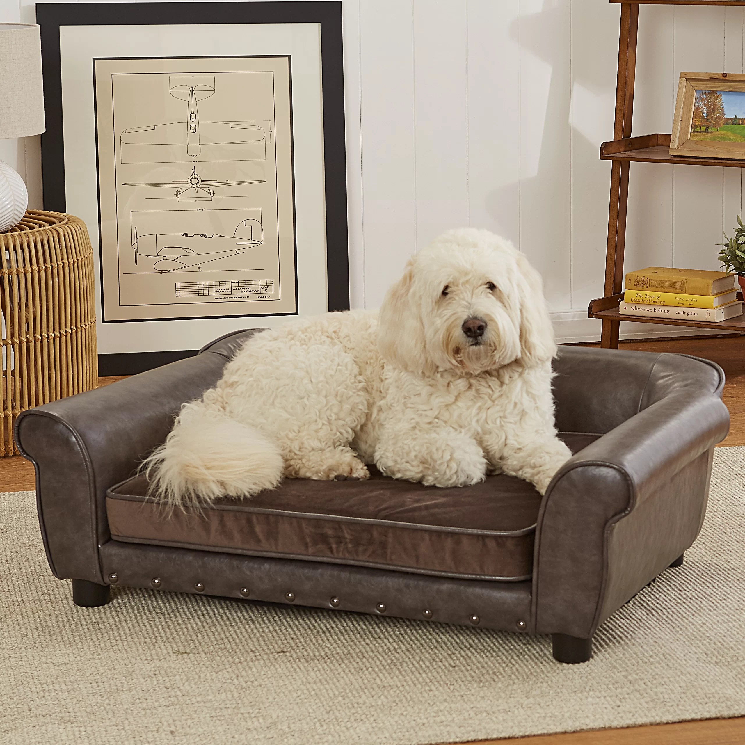 enchanted home mackenzie pet sofa furniture row mart spokane spencer dog wayfair