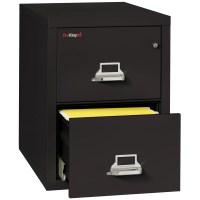 FireKing Fireproof 2-Drawer Vertical Letter File | Wayfair ...