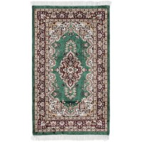 ECARPETGALLERY Kashmir Hand-Knotted Green Area Rug ...