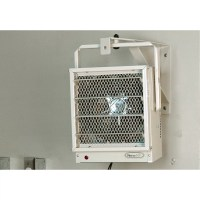 NewAir 5,000 Watts Fan Forced Wall/Ceiling Electric Garage ...