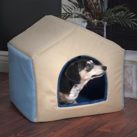 PAW 2-in-1 Dog House Pet Bed & Reviews | Wayfair