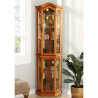 Jenlea Floor Standing Curio Cabinet & Reviews | Wayfair