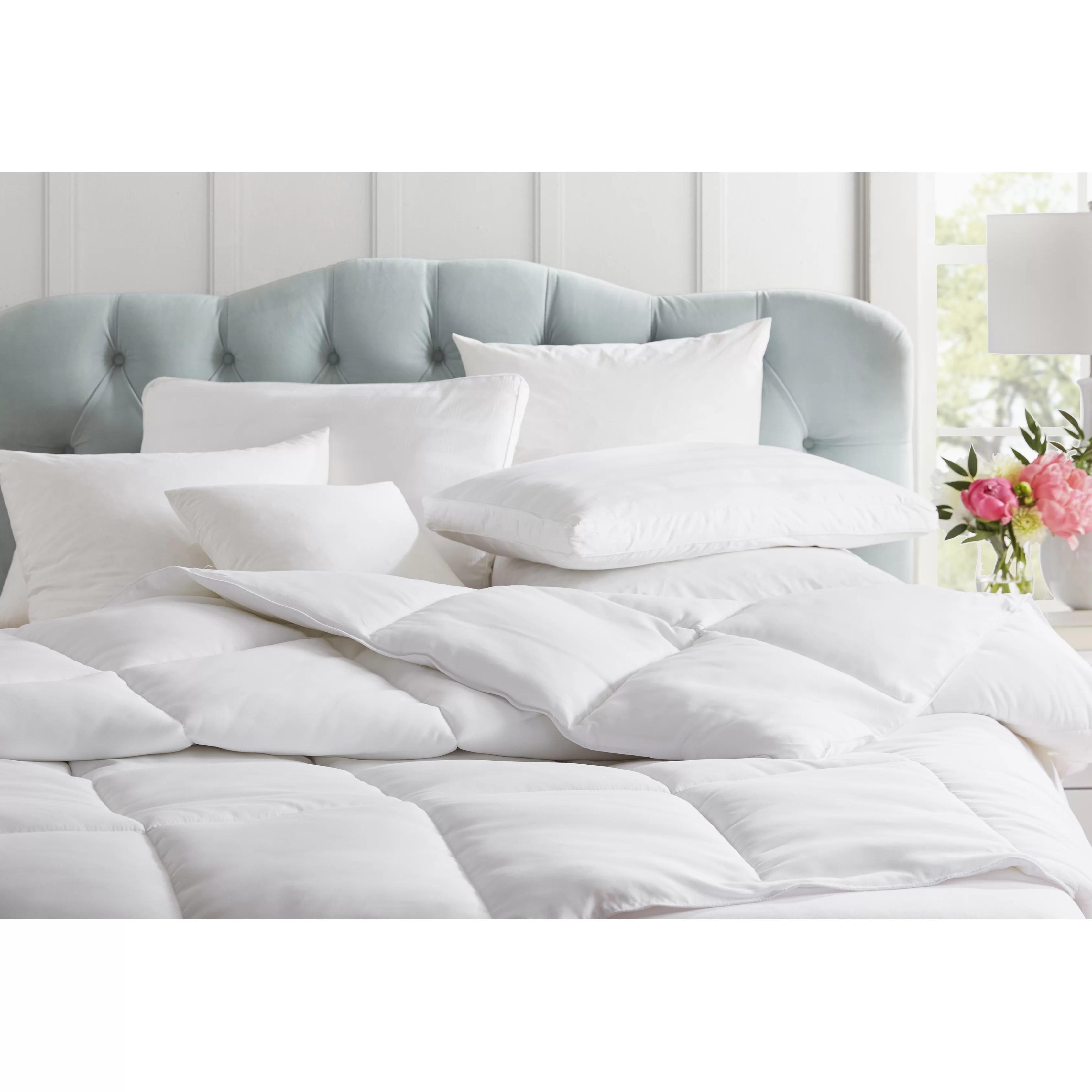 Blue Ridge Home Fashion Feathers European Pillow & Reviews