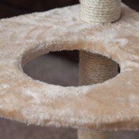 "IRIS 50"" Carpeted Cat Tree & Reviews 