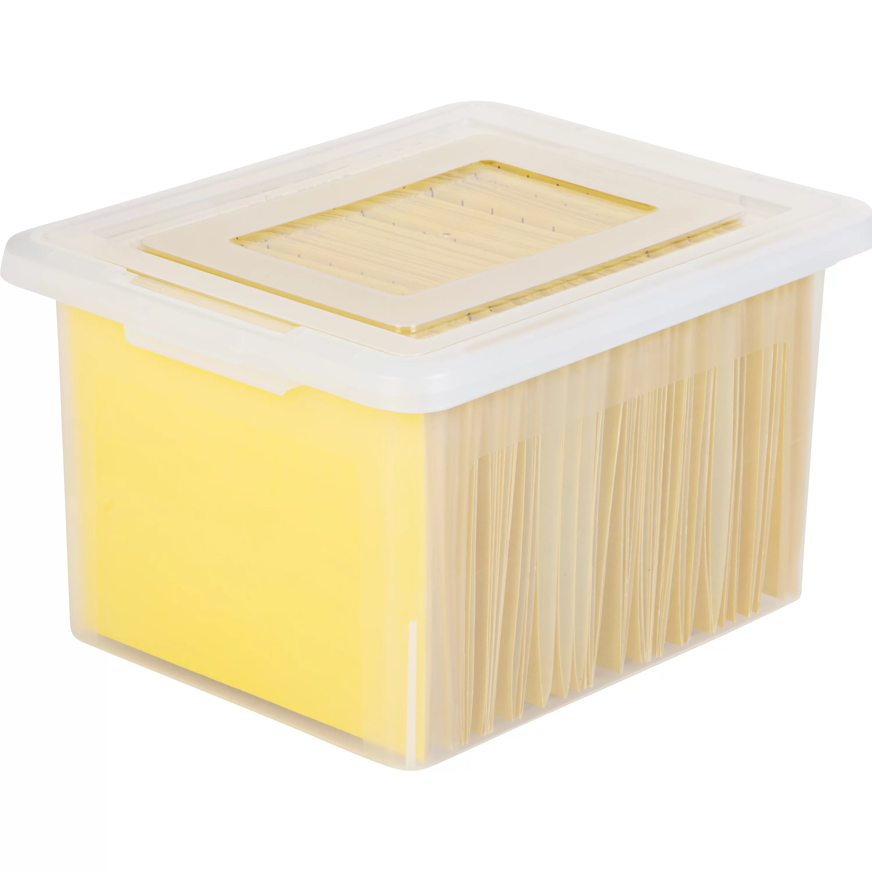 IRIS Letter  Legal Size File Box  Wayfair