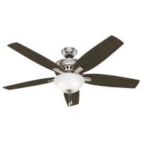 "Hunter Fan 56"" Newsome 5 Blade Ceiling Fan & Reviews | Wayfair"
