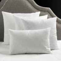 Surya Down Pillow Insert & Reviews | Wayfair